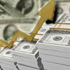 Dolar cinsi dış borcun sorunları!