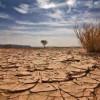 Küresel ısınmanın sebepleri