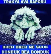 Trakya Ava Raporu